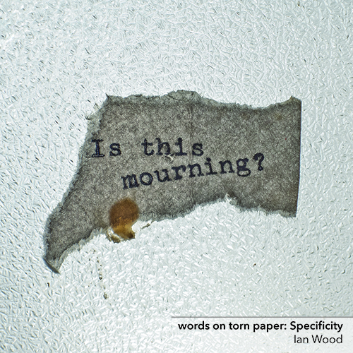 words on torn paper: Specificity